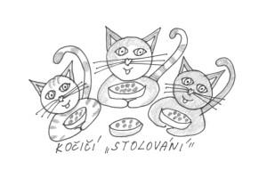 Kočičí stolování1