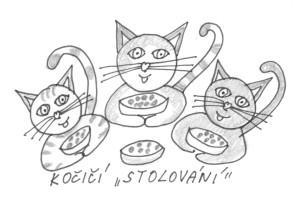 Kočičí stolování1m