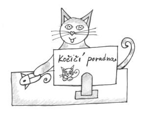 Kocici-poradna1