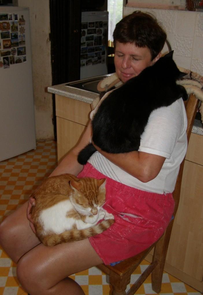 Koťata-Max a Bubu3